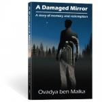 A Damaged Mirror: Glossary