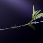 Wire Leaf Banner