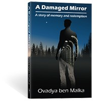 A Damaged Mirror: A story of memory and redemption