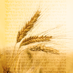 Shavuot: What an ancient controversy teaches us about nation-building