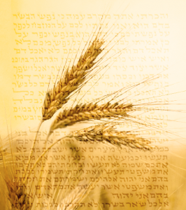 Shavuot_cropped2